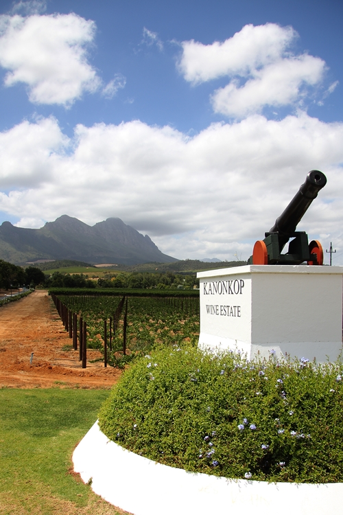 image of the Canon at Kanonkop Wine Estate