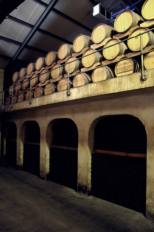 image from the barrel room at Kanonkop