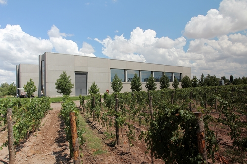image of the Vina Cobos winery and the inclining vineyard