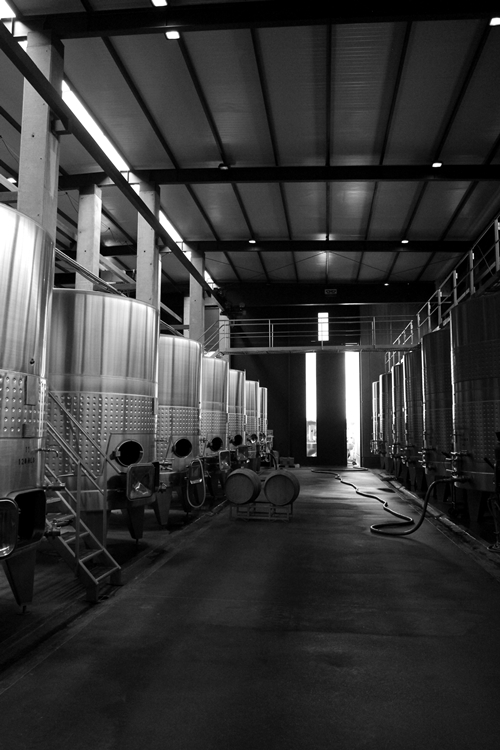 image of the fermentation tanks at Vina Cobos